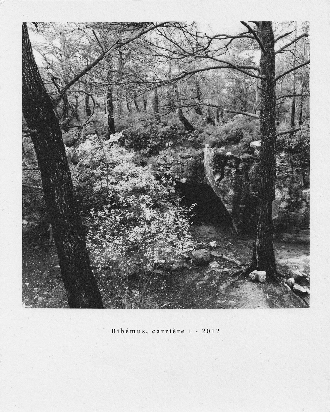 06-Bibémus-1