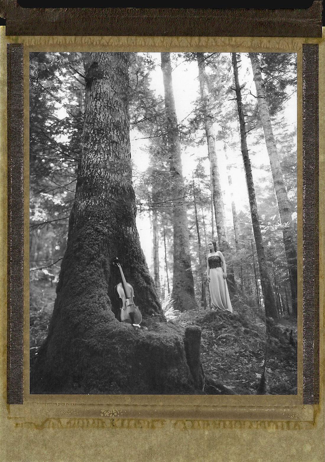07-Chandra-forêt-3
